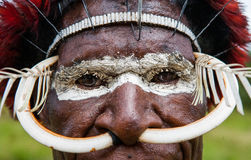 Portrait of Dani tribe in a beautiful headdress made of feathers. Stock Photo