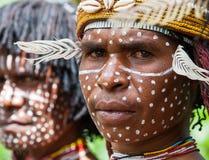 Portrait Dani tribe Warrior. Stock Images