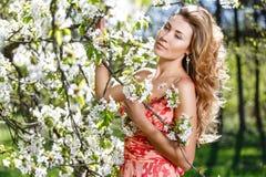 Portrait dans la floraison des Apple-arbres Images stock