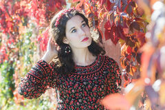 Portrait of daydreaming autumn girl with autumn Stock Photography