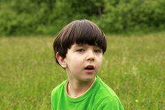 Portrait de 5 ans de garçon en nature Images stock