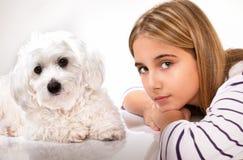 Portrait de belle fille et de chien maltais Images stock