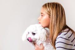Portrait de belle fille et de chien maltais dans le profil Photos stock