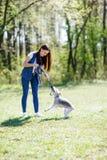 Portrait de belle jeune fille avec ses chiens Image stock