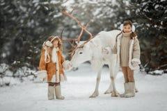 Portrait de belle petite fille dans le manteau de fourrure à la forêt d'hiver image libre de droits