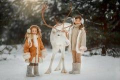 Portrait de belle petite fille dans le manteau de fourrure à la forêt d'hiver photos stock
