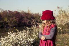 Portrait de belle petite fille en nature Photographie stock