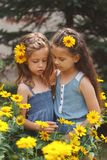 Portrait de belles filles heureuses dans le parterre photo libre de droits
