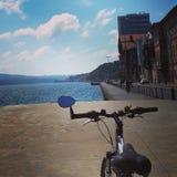 Portrait de bicyclette Images stock