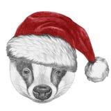 Portrait de blaireau avec Santa Hat Photo stock