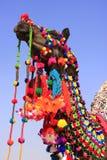 Portrait de chameau décoré au festival de désert, Jaisalmer, Inde image libre de droits