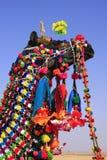 Portrait de chameau décoré au festival de désert, Jaisalmer, Inde Photographie stock
