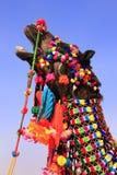 Portrait de chameau décoré au festival de désert, Jaisalmer, Inde images stock