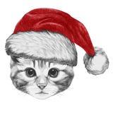Portrait de chat avec Santa Hat Image stock