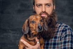Portrait de chien de blaireau brun et de son ami barbu d'homme Photographie stock