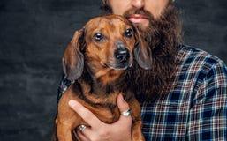 Portrait de chien de blaireau brun et de son ami barbu d'homme Photographie stock libre de droits