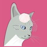 Portrait de dame-chat de mode Photos stock