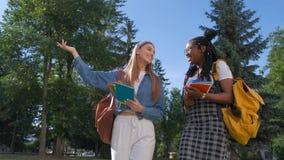 Portrait de deux amis multinationaux féminins Les filles marchent en parc pendant l'été Mode de vie d'étudiant, amitié banque de vidéos