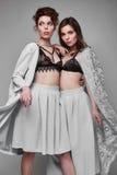 Portrait de deux beaux, modèle-jumeaux sensuels de brune Photo stock