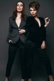 Portrait de deux beaux, modèle-jumeaux sensuels de brune Photo libre de droits