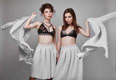 Portrait de deux beaux, modèle-jumeaux sensuels de brune Photographie stock libre de droits