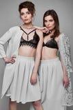 Portrait de deux beaux, modèle-jumeaux sensuels de brune Image libre de droits