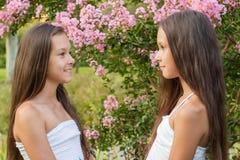Portrait de deux belles jumelles de filles Photo stock
