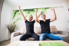 Portrait de deux compagnons de chambre regardant la TV se reposer dans un sofa confortable dans le salon à la maison Photo stock