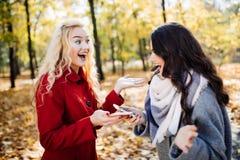 Portrait de deux femmes riantes parlant dehors en parc d'automne Image libre de droits