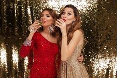Portrait de deux filles attirantes de sourire dans des robes brillantes Photos stock