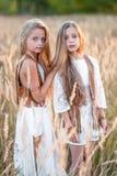 Portrait de deux filles des amies Photo libre de droits