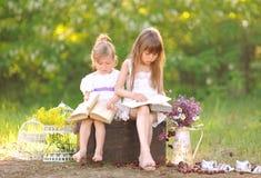 Portrait de deux filles des amies Images stock