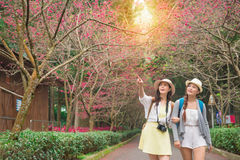 Portrait de deux jeunes amis féminins Photo libre de droits