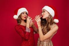 Portrait de deux jeunes jolies filles dans des robes brillantes Image stock