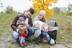 Portrait de famille heureuse : Mère, père, enfants et chiot deux de bouledogue dehors Automne dedans dehors Images libres de droits