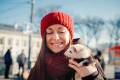 Portrait de furet d'animal familier explorant la vie urbaine Photographie stock libre de droits