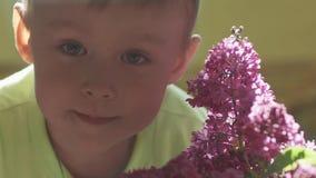 Portrait de garçon avec le fond brouillé du lilas banque de vidéos