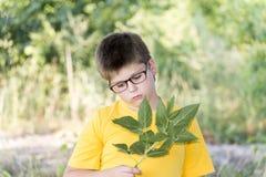 Portrait de garçon de 10 ans en parc Photos stock
