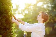 Portrait de jardinier f?minin m?r Femme travaillant avec le secateur dans le jardin domestique au jour d'?t? photographie stock libre de droits