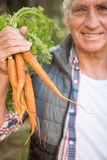 Portrait de jardinier heureux tenant des carottes au jardin photographie stock