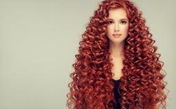 Portrait de jeune, attrayant jeune modèle avec les cheveux rouges denses, longs, bouclés incroyables Cheveux crépus images libres de droits