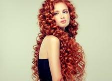 Portrait de jeune, attrayant jeune modèle avec les cheveux rouges denses, longs, bouclés incroyables Cheveux crépus photos libres de droits