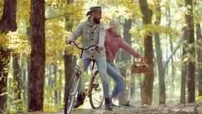 Portrait de jeune femme gaie et d'homme barbu avec des feuilles d'automne Autumn Couple romantique dans l'amour Retouch? et clips vidéos