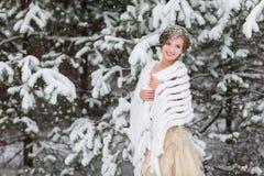 Portrait de jeune mariée d'hiver Photo stock