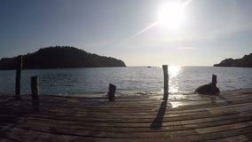 Portrait de jeunes amis sautant dans l'eau d'une jetée Les jeunes ayant l'amusement à la mer le jour d'été banque de vidéos
