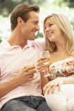 Portrait de jeunes couples détendant sur Sofa Drinking Wine Together Photo stock