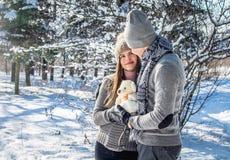 Portrait de jeunes couples dans l'amour avec l'ours de nounours Photo libre de droits