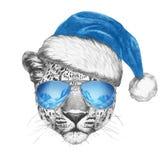 Portrait de léopard avec Santa Hat et des lunettes de soleil Photo libre de droits