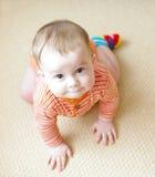 Portrait de l'âge drôle de bébé de 7 mois Photo libre de droits