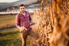 portrait de l'agriculteur à l'aide du comprimé tout en moissonnant Les détails de l'agriculture, les gens se ferment  photos stock